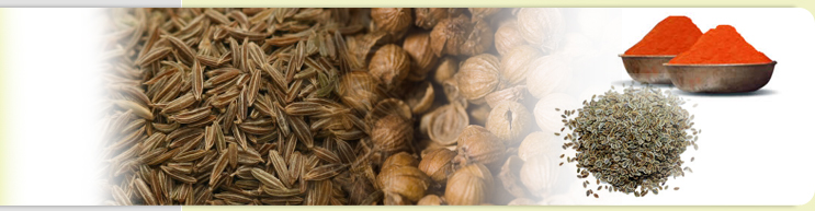 Cumin, Dill, Fennel Seeds and Powder Processor Exporter in India.